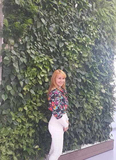 Фитостена в офисе, 2014г