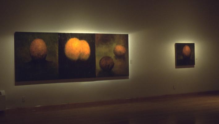 """JOSEPH SIDDIQI """"Visage Paysage"""" 2002 Maison de la Culture Mercier Montreal QC"""