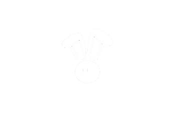 Cottontail Logo Transparent Inverted.png