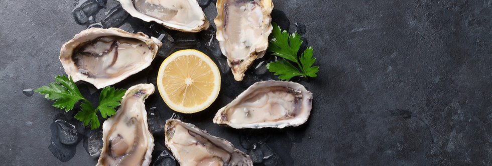 Oysters - Rocks - Fresh