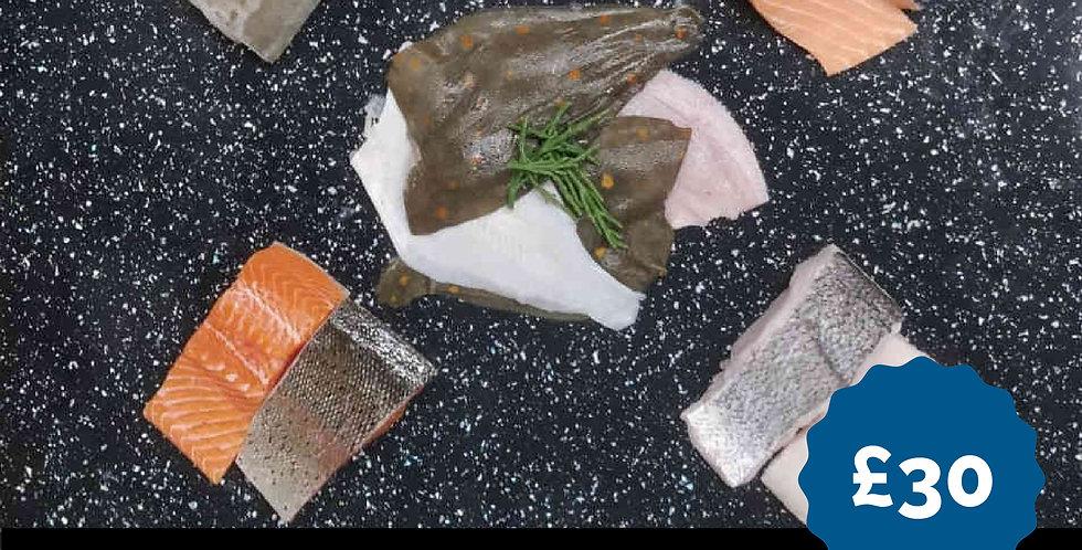 Fish Box - Silver  - Fresh
