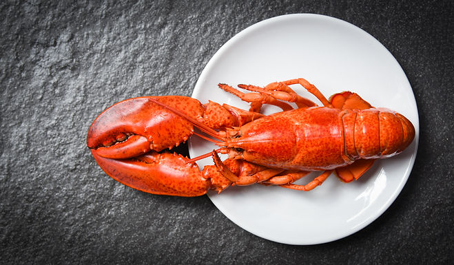 Cooked Lobster 400-600g