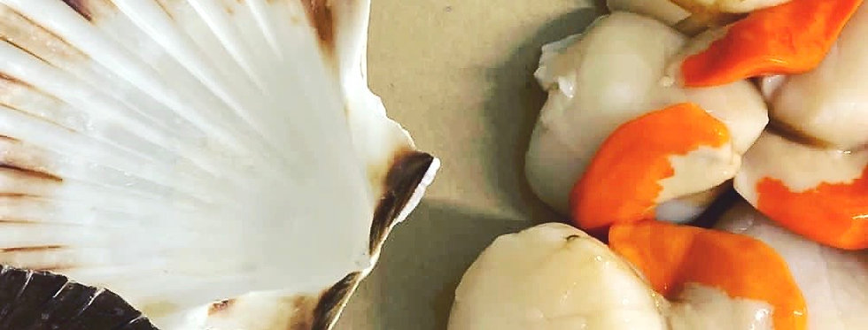 Dry Cut King Scallops - Shetland - Fresh 250g