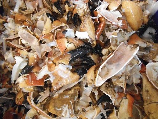 Crab Bones - Frozen