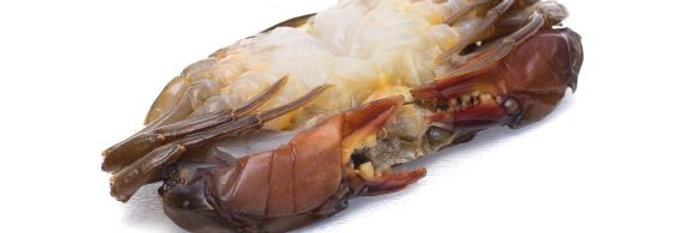 Soft Shell Crab - Frozen