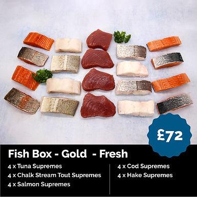 Fish Box - Gold  - Fresh