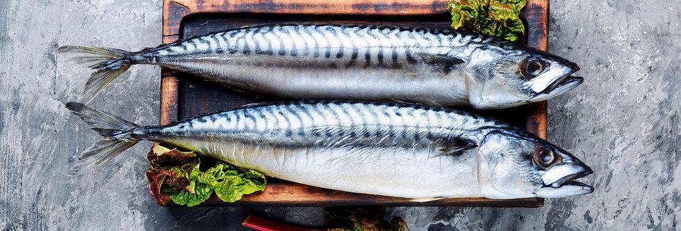 Whole Mackerel Wild 300-500g