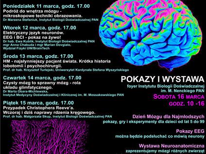 Brain week 16.03.2019