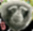天行长臂猿-游戏用图-3.png