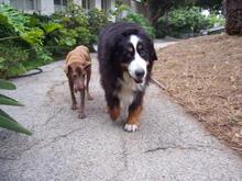 Luly & Oscar