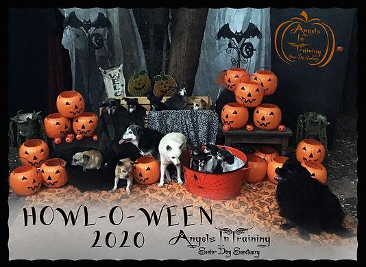AIT Howl-O-Ween 2020 XXX.jpg