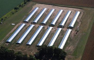 Granjas de Producción Avícola Parril