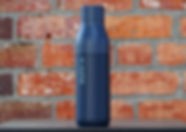 Brick Wall with Bottle.jpg