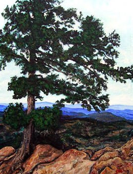 Eastblown Tree Flagstaff
