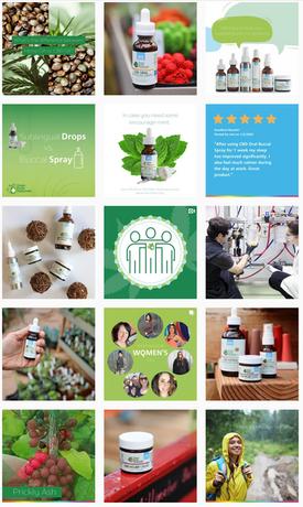 Green Earth Medicinals