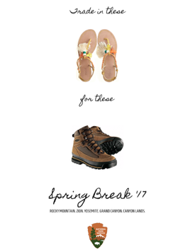 sb_shoes.png