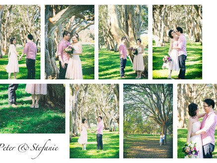 Peter and Stefanie Prewed photo sneak peak