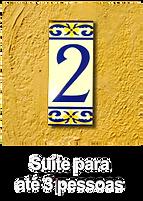 BOTAO 2.png