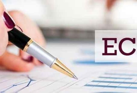 Empresas devem realizar o envio da ECF neste mês