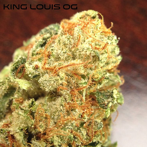 King Louis Og - Small Nug - Patient Favorite for 10 Years!!!