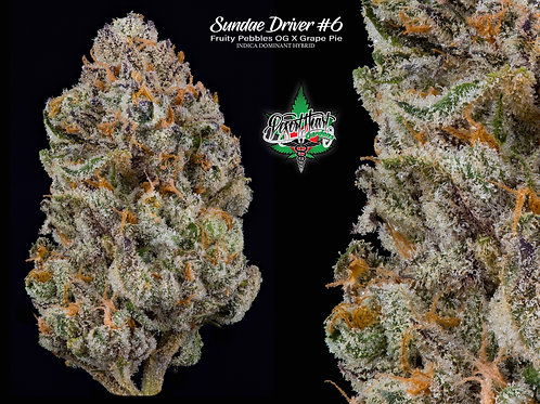 Sundae Driver #6 - Sweet and Frosty!