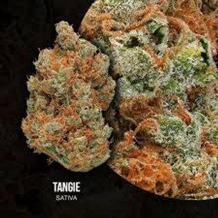 Tangie - New Sativa!