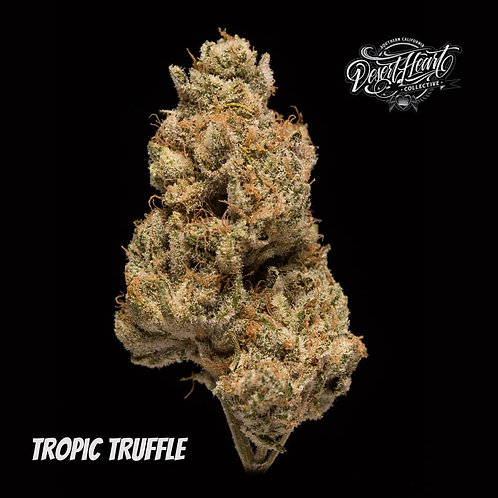 Tropic Truffle - Dark Purple Batch - Tangie Smells