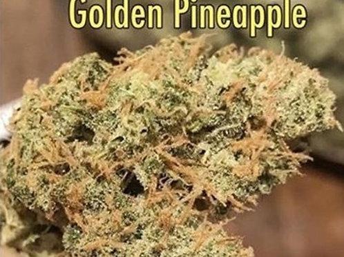 Golden Pineapple - New Frosty Beauty!