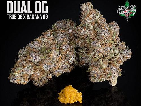 Dual OG - True OG X Banana OG #7