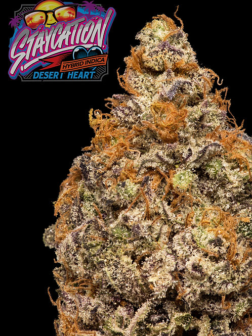 StayCation - 420 Exclusive!!!