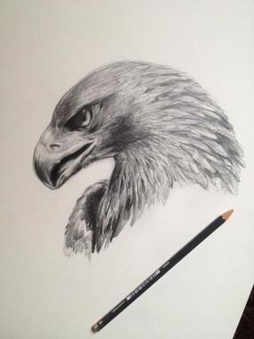 Zeichnung von Esther