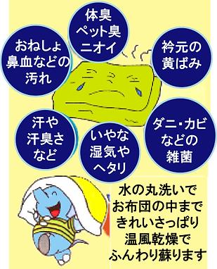 丸洗いPop.PNG