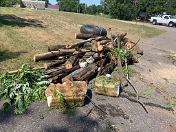 Farm Lake Creek debris July 26 2019.jpg