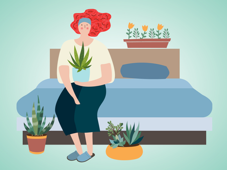 Home Camp: 3 Ways Houseplants Help You Relax and Unwind Before Bed