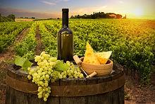 Wine Taste Tour