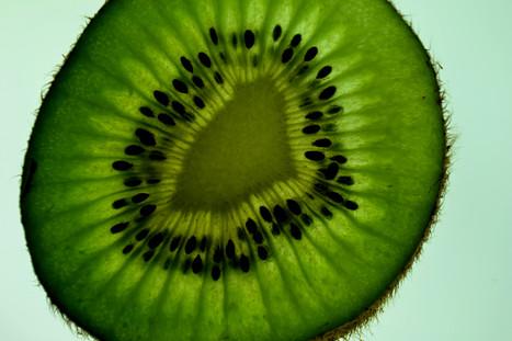 kiwi #4