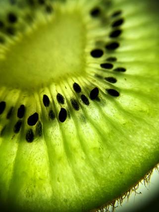 kiwi #2