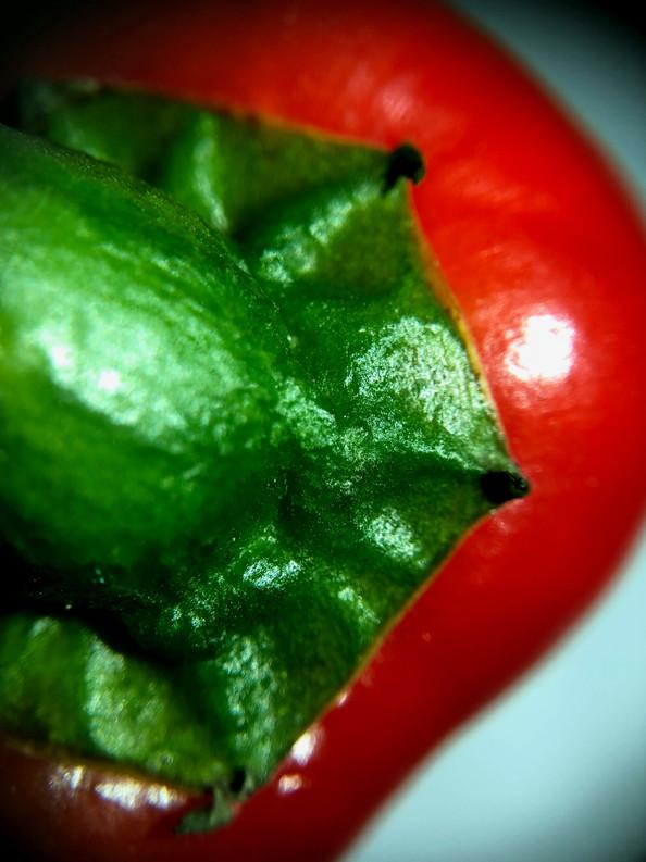 pepper #1