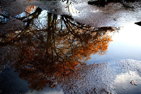 reflections#1