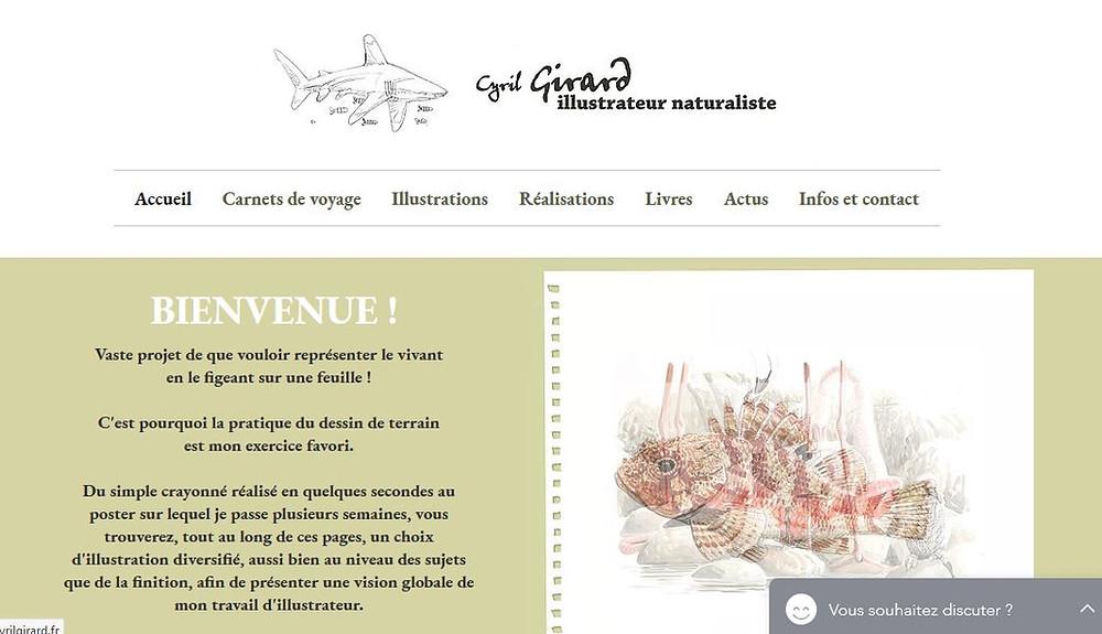 Conception site web nature ecocommunication