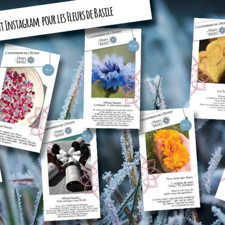24 jours pour découvrir les trésors des fleurs... de basile !