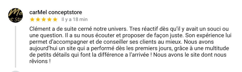 Avis Clément Vigneron Webmaster