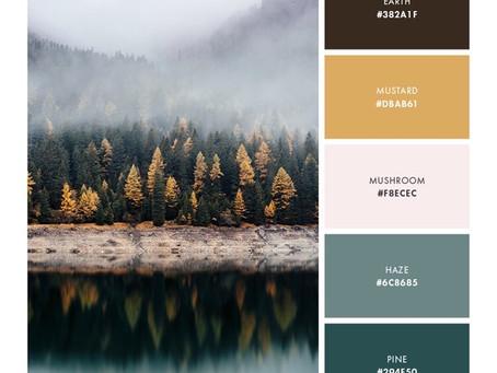 Identifier les couleurs