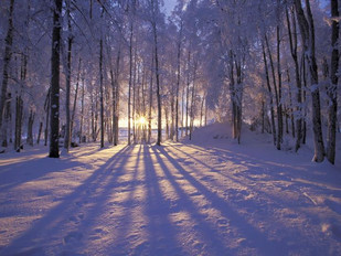 Winter Solstice: light, a new start, and traditions