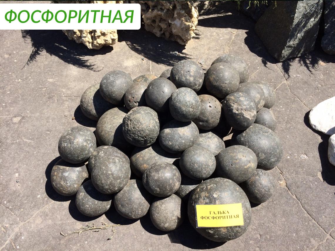 fosforitnaya