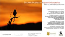 Exposición en Guanajuato, Gto