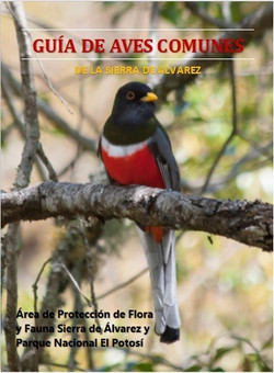 Guía de aves de Sierra de Álvarez