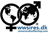 WWS DK.JPG