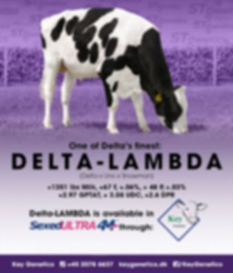TAG-banniere-Delta-Lambda.jpg