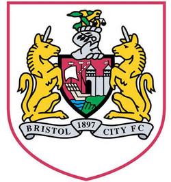 bristol city logo.jpg